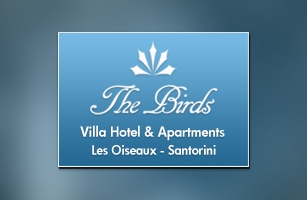 Website Design & Development of The birds hotel & villas in Santorini