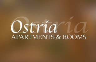 Website Design & Web development of Pansion Ostria in Paros Island