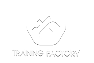 Design-Development of the website for Training Factory